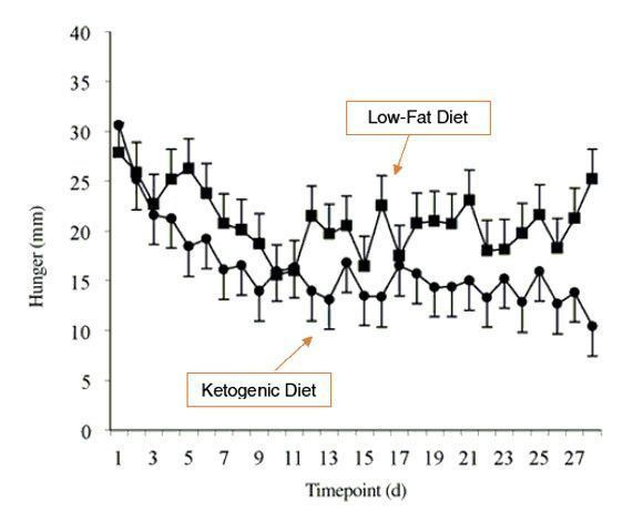 ketogenic diet hunger and timepoint